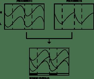SONNO-SVEGLIA